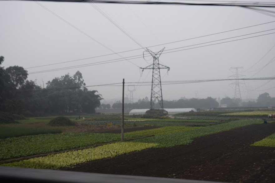 A shot through the window at some of the farmland