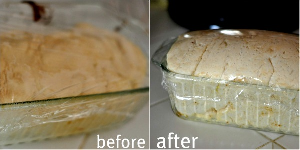 before after bread rise home made