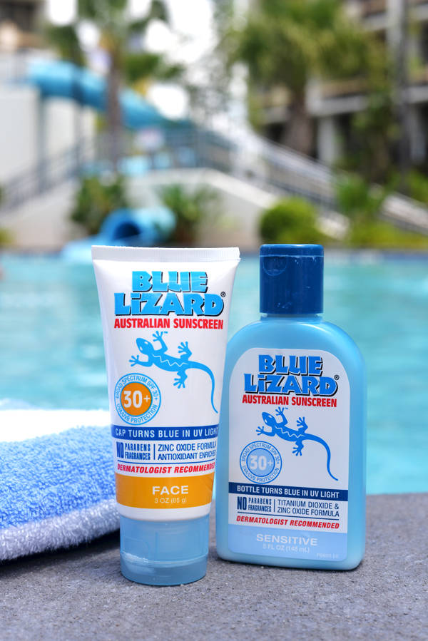 Blue Lizard Sun Screen (2)