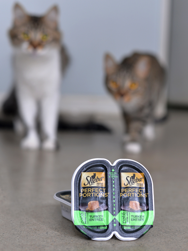 Sheba Perfect Portions Cat food meat first (1)