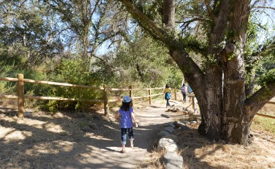 5 Simple Activities families can do outdoors