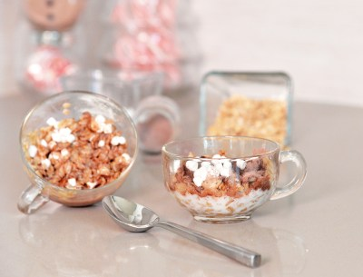 Hot Cocoa Oatmeal Marshmallows (3)