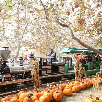 The Best Orange County Pumpkin Patches – Irvine Park Railroad Pumpkin Patch