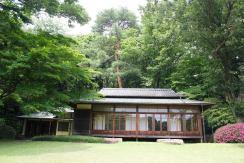 Meiji Shrine - Tokyo26