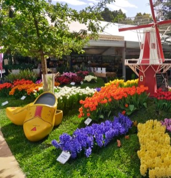 Melbo flower and garden show 2019 33