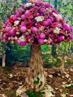 Melbo flower and garden show 2019 35