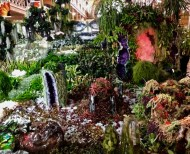 Melbo flower and garden show 2019 42