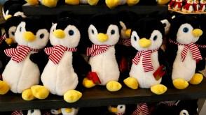 Penguin pde12