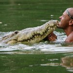 The man who swims with a crocodile: the story of Chito and Pocho