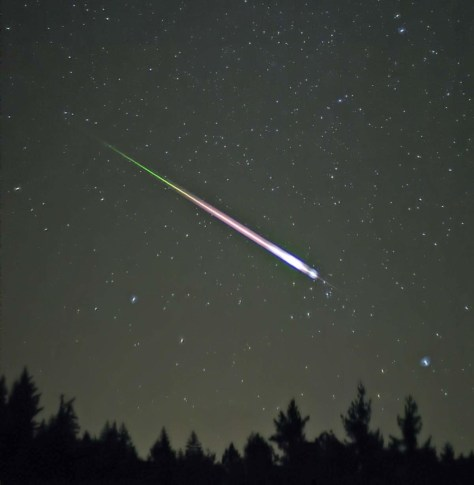 A Leonid meteor