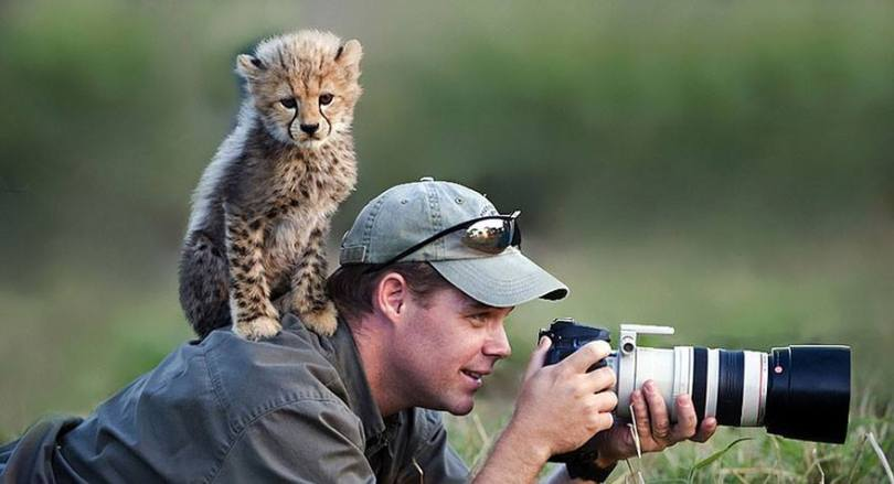 Cheetah cub and photographer