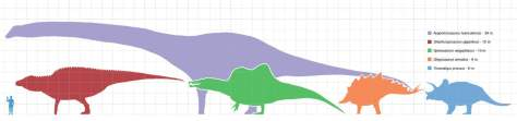 Largest dinosaurs scale