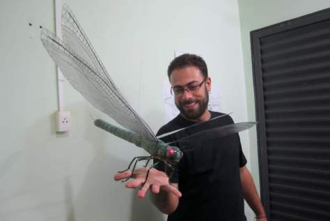 Largest insect ever lived: Meganeuropsis permiana