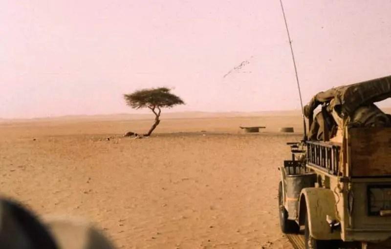Tree of Ténéré in 1961