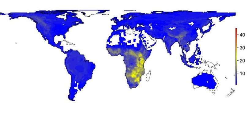 World - current large animals diversity