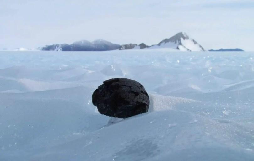 Meteorite on- Antarctic ice