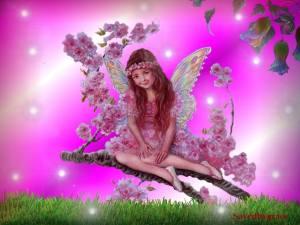 ericas-fairies