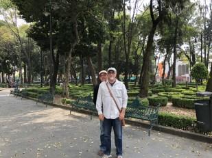 main Coyoacan square