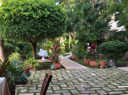 Lovely courtyard at Casa Marlene