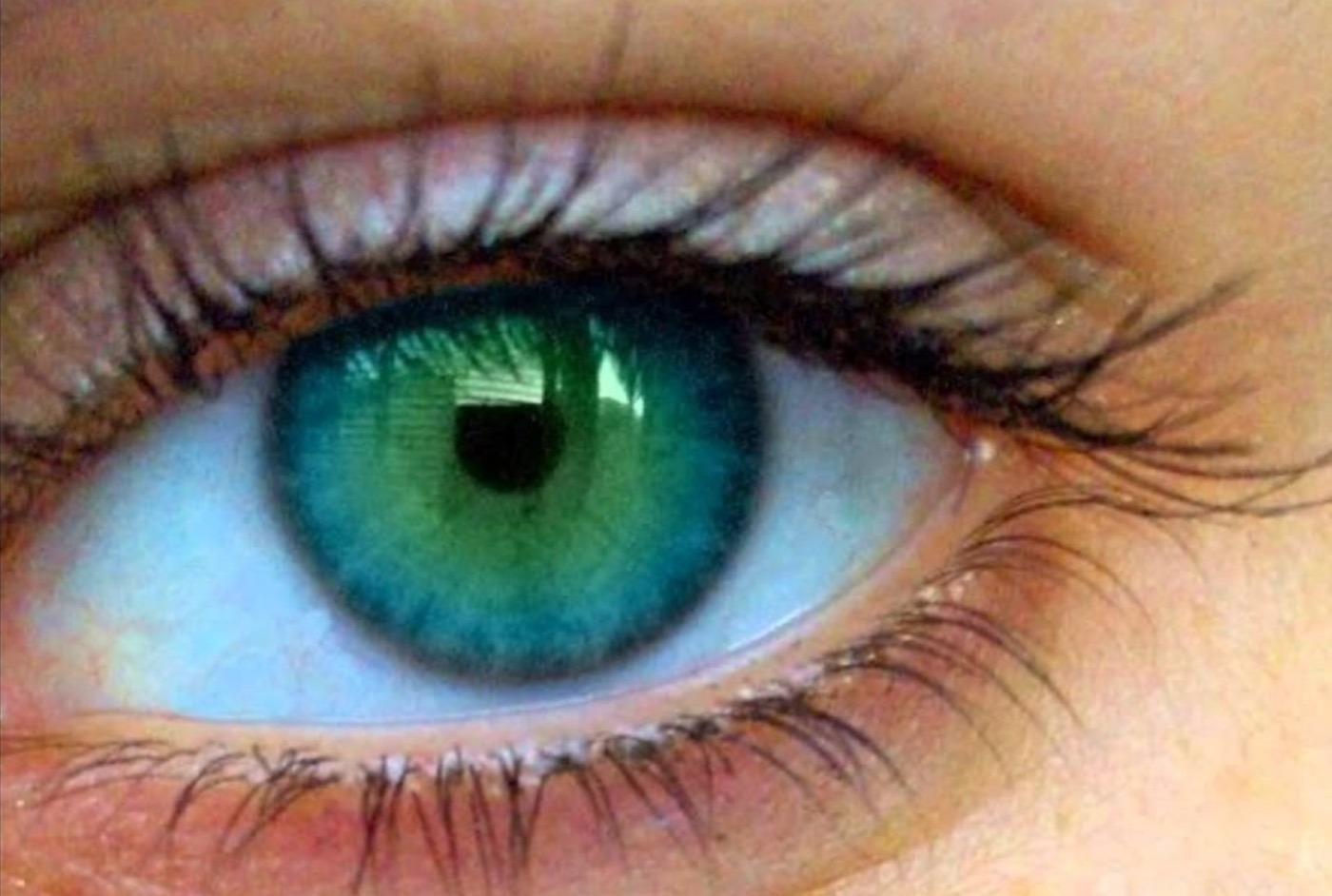 A Good Eye Or A Bad Eye A Cryptic But Critical Idiom