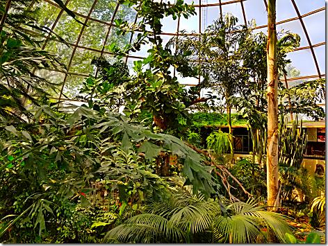 Reptile Gardens Dome 1