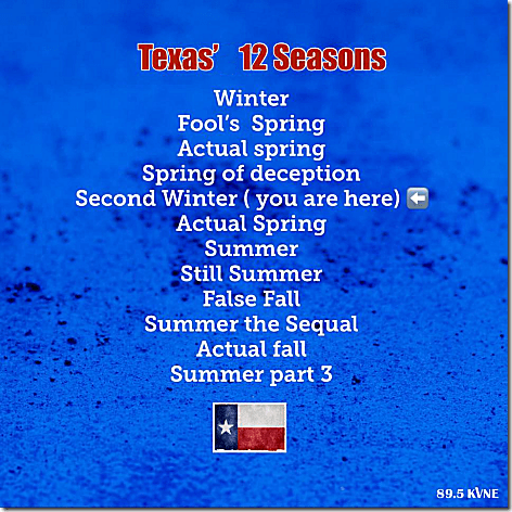 Texas' Seasons
