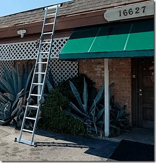 New Ladder at TES