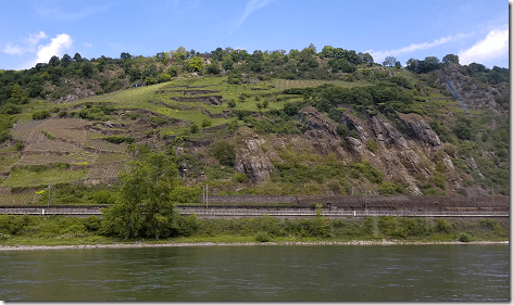 Cruising The Rhine Vineyards