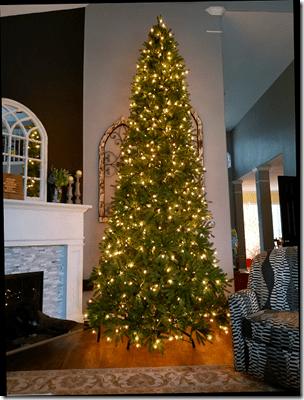 Brandi 2019 Big Christmas Tree