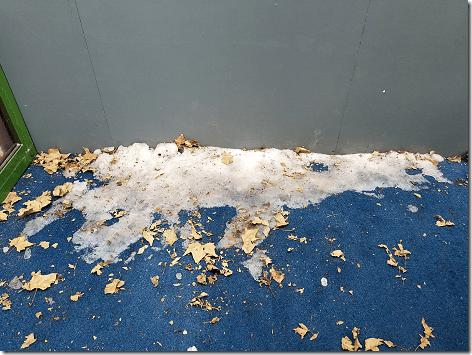 Bryant Park - Snow