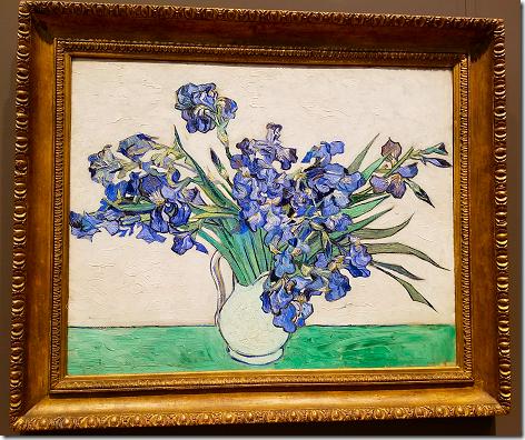 Van Gogh Irisis