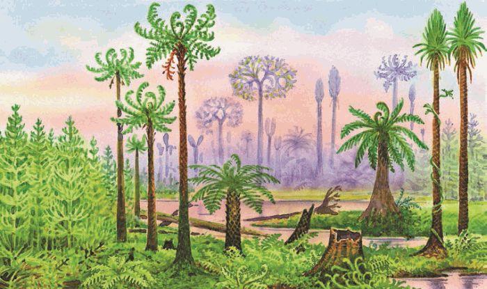 kako se datiranje ugljikom može koristiti za rekonstrukciju povijesti koralnog grebena