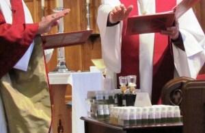 Renewal of Ordination Vows- San Diego @ Our Savior's Lutheran Church   San Diego   California   United States