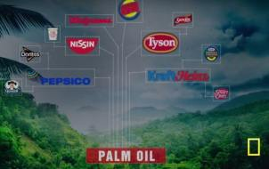 Global brands that use unsustainable palm oil in their products