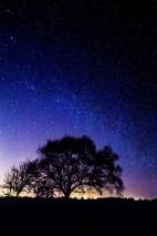Culloden Sky
