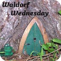 Waldorf Wednesday