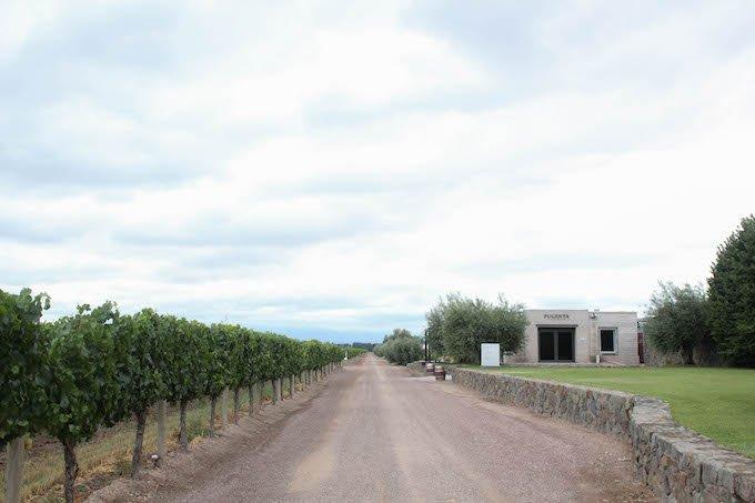 Mendoza-Madryn-7