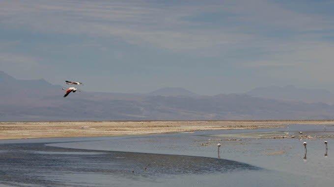 Chile blog-27