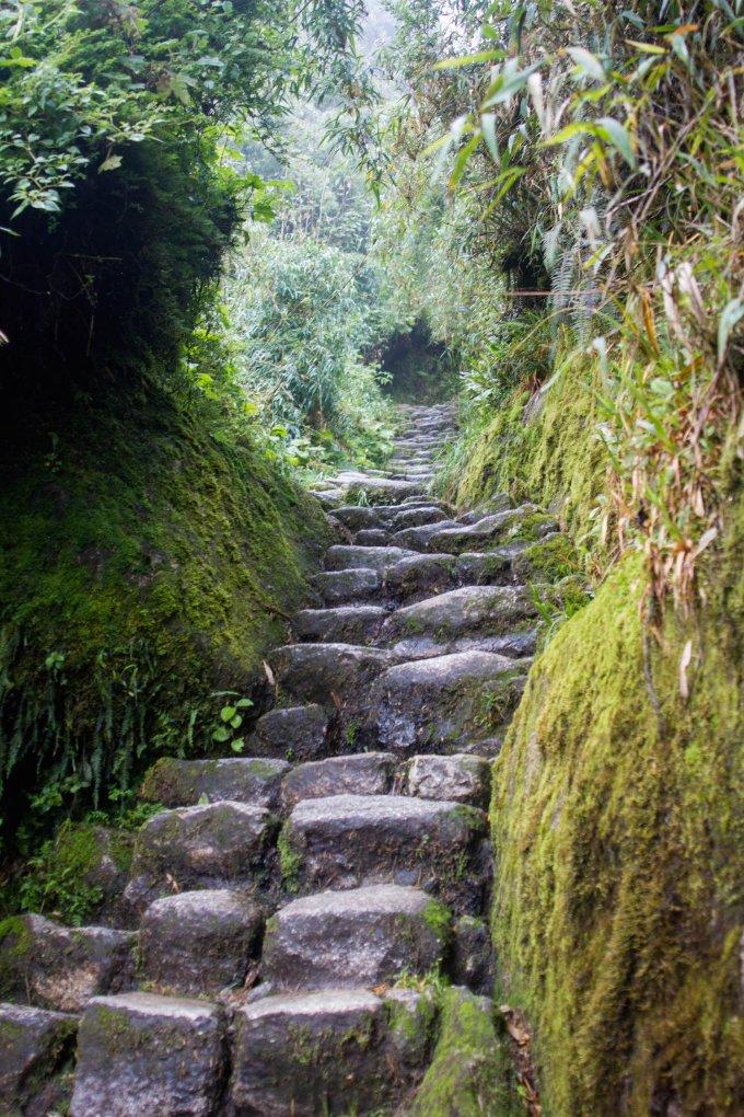 our simple adventure machu picchu inca trail-83