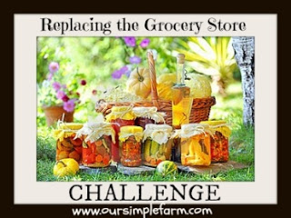 Replacing the Grocery Store Challenge Day 1