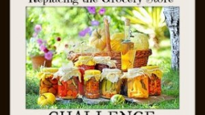 Replacing the Grocery Store Challenge Day 12 – Make Your Own Homemade Cleaners and Disinfectants