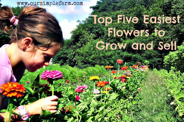 The Top Five Easiest Flowers to Grow and Sell