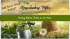 The Homesteading Wife's Christian Devotional eBook Launch and Giveaway!