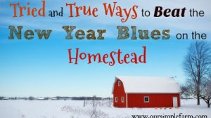 Tried and True Ways to Beat the New Year Blues on the Homestead