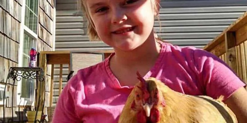 basic homesteading skills to teach children