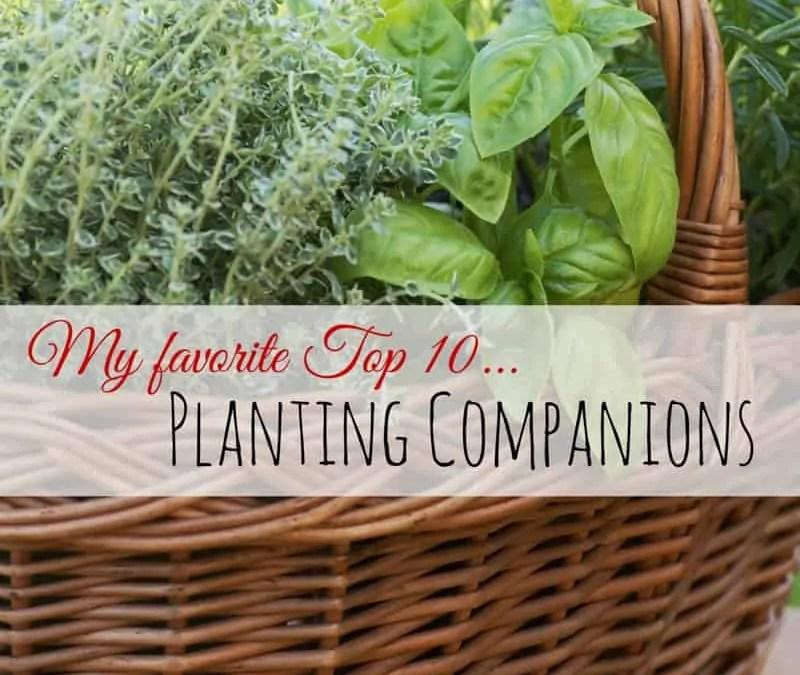 Top 10 Planting Companions