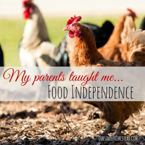 Food Independence