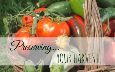 Preserving Vegetables – Harvesting Your Garden