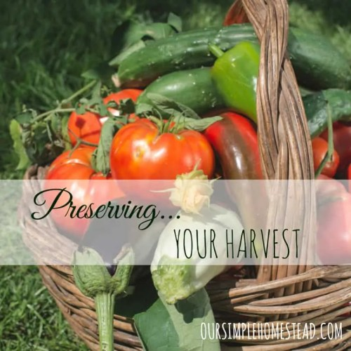 Preserving Your Harvest