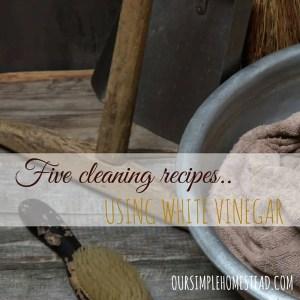 5 DIT Cleaning Recipes Using Vinegar